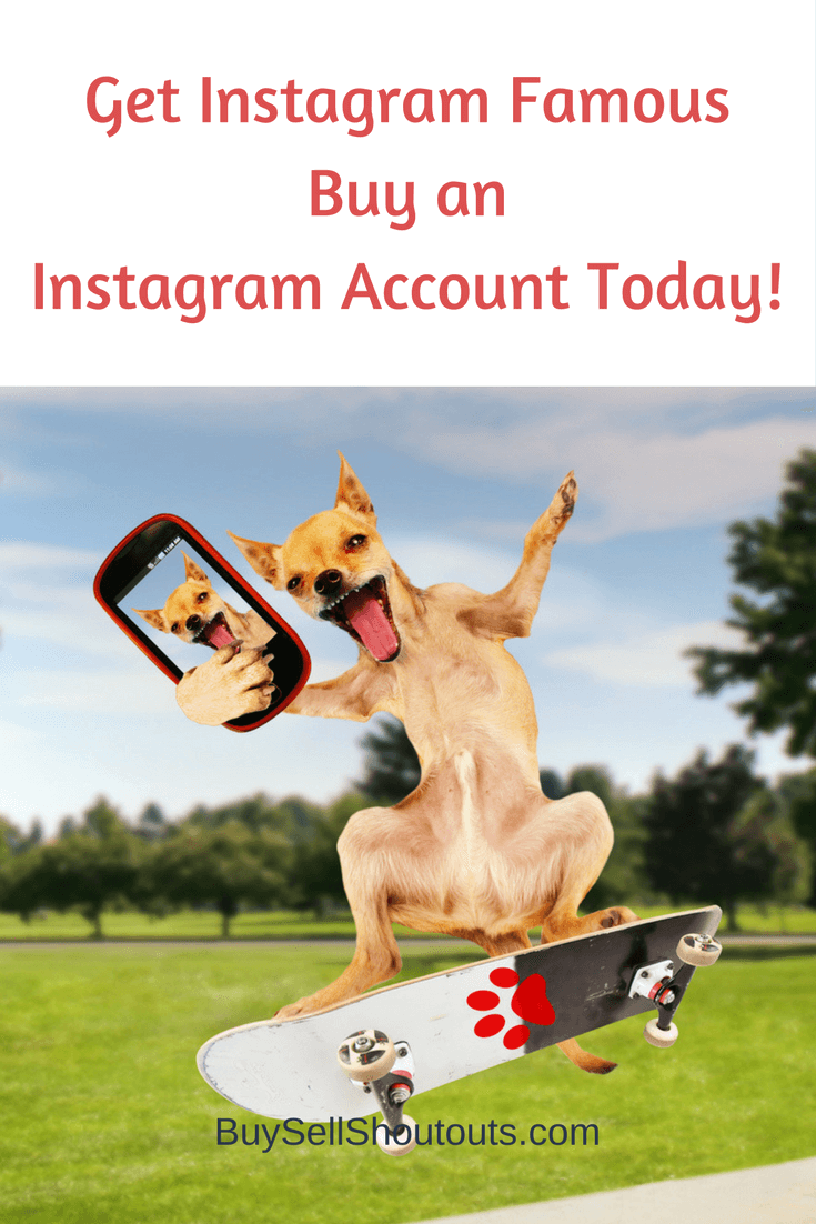Planning-to-buy-Instagram-accounts-today_ Planning to buy Instagram accounts today? %shoutout